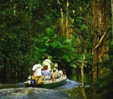 DICAS DE VIAGEM PARA AMAZONIA