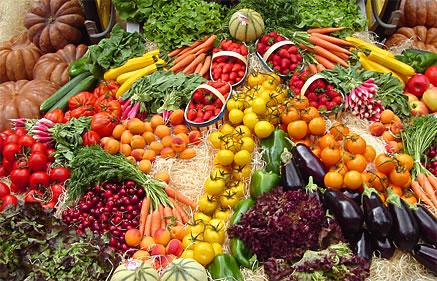 Dicas para manter uma dieta vegana